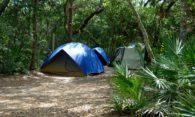 (Español) Los autobuses de Travidi os llevan de acampada