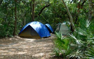 Los autobuses de Travidi os llevan de acampada