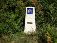Cómo disfrutar del Camino Portugués por la costa con Travidi